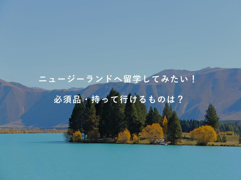 ニュージーランドへ留学してみたい!必須品・持って行けるものは?