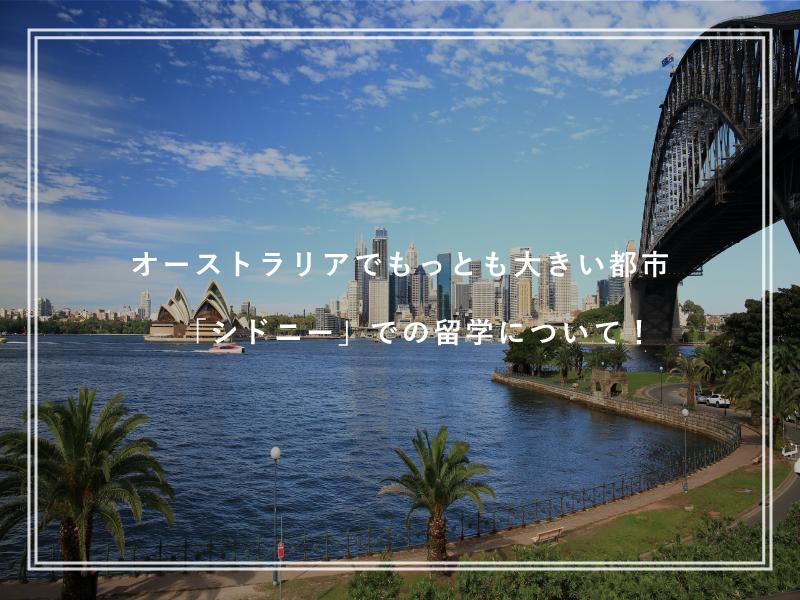 オーストラリアでもっとも大きい都市「シドニー」での留学について!