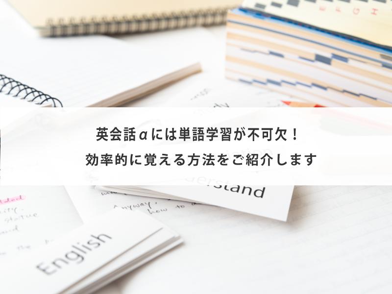 英会話αには単語学習が不可欠!効率的に覚える方法をご紹介します