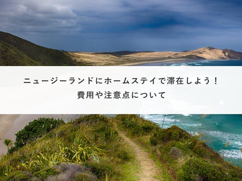 ニュージーランドにホームステイで滞在しよう!費用や注意点について