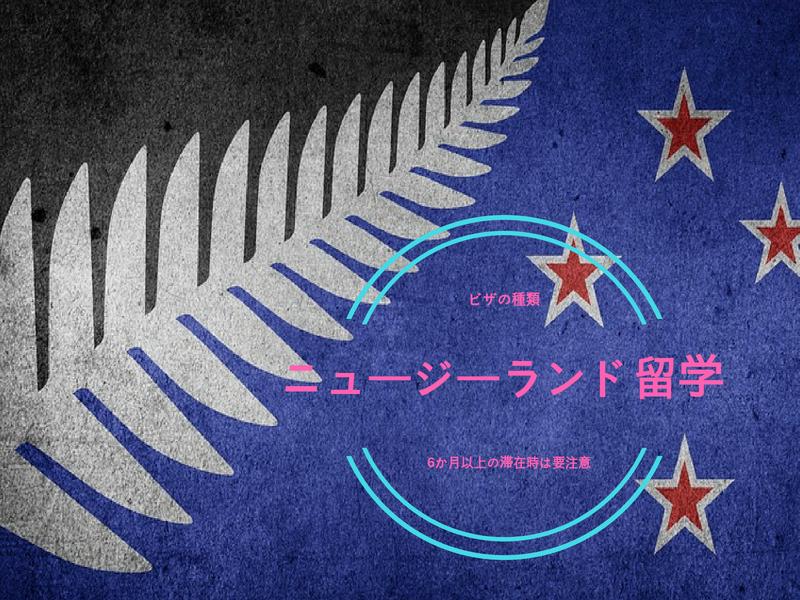 ニュージーランド留学で使うビザの種類!6か月以上の滞在時は要注意