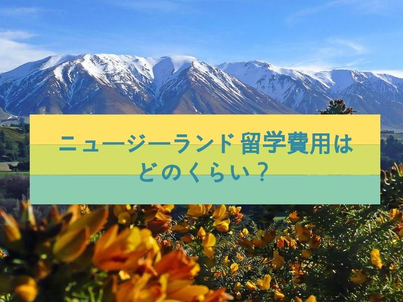 ニュージーランド留学費用はどのくらい?人気の理由も解説します!