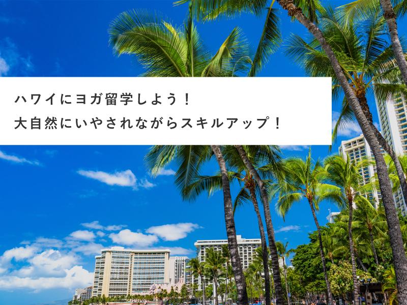 ハワイにヨガ留学しよう!大自然にいやされながらスキルアップ!