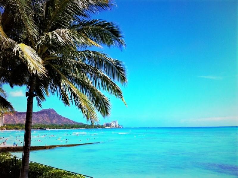 ハワイ留学の学費にはどのくらいが目安?費用節約には滞在費がカギ!