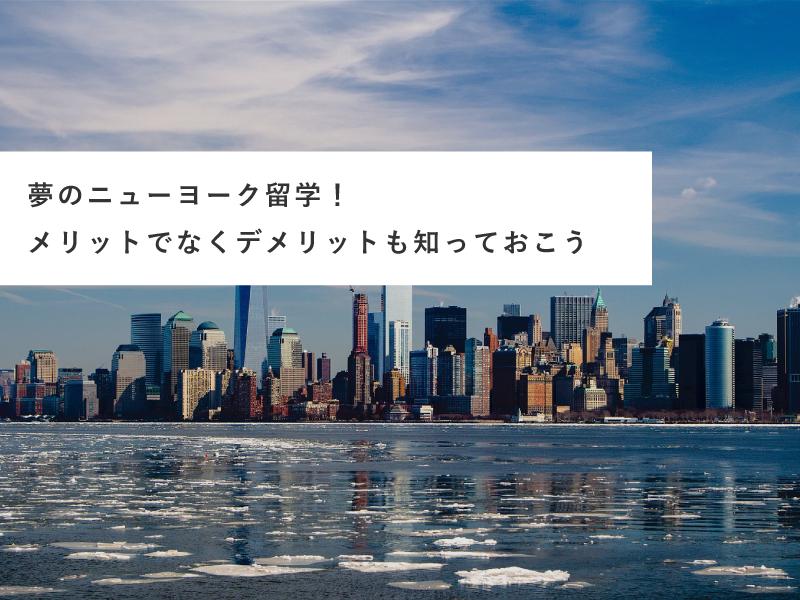 夢のニューヨーク留学!メリットでなくデメリットも知っておこう