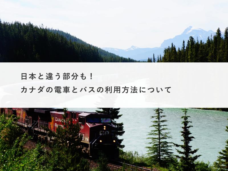日本と違う部分も!留学前に知りたいカナダの電車とバスの利用方法について