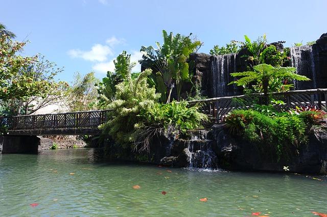 ハワイってこんな場所!ハワイの地域と魅力
