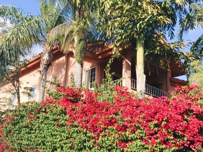 LA留学中に住んでいたかわいいシェアハウスのこと【りなのアメリカLA留学ブログ】