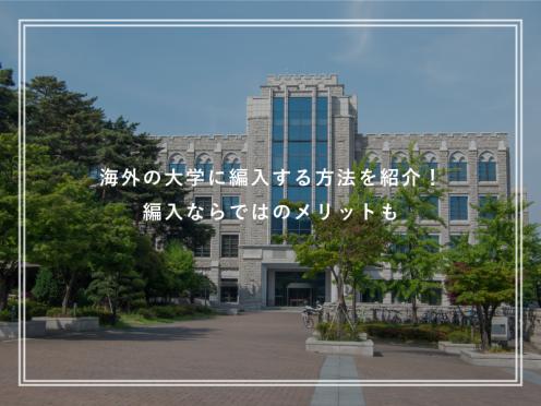 海外の大学に編入したい方必見!編入留学のメリットを解説