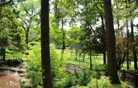 カナダトロント 観光名所 ハイ公園… エミリーのEnglish留学日記