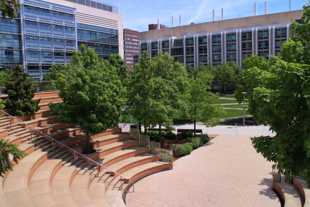 【大学院留学】アメリカの大学院に入学する前に知っておきたいこと