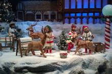 カナダトロント可愛いお人形たち エミリーのEnglish留学日記
