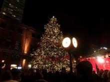 カナダトロント クリスマスマーケット  エミリーのEnglish留学日記