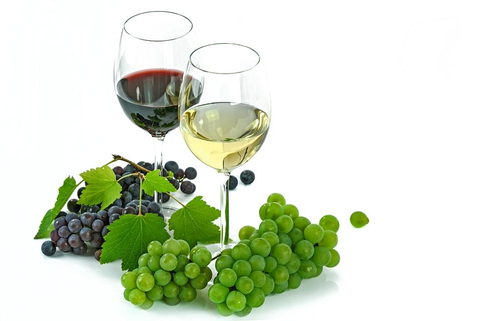 有名なワイン産地が近くに!アデレードの見所